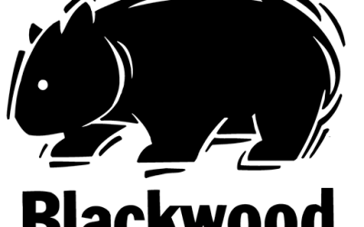 Blackwood Times comes back in 2020